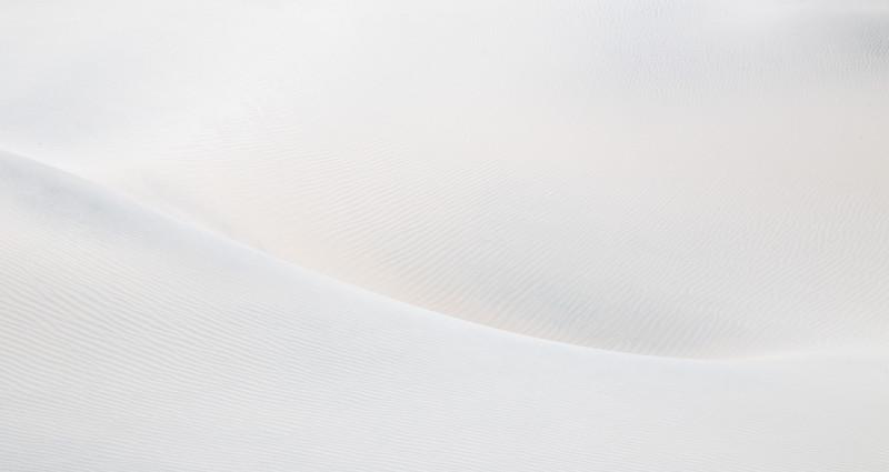 Shane Davila.2.Curvy.jpg