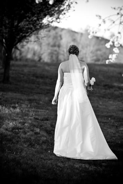 wedding_360.jpg