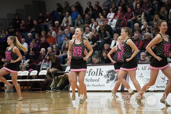 Pink Panthers 1-19-2018