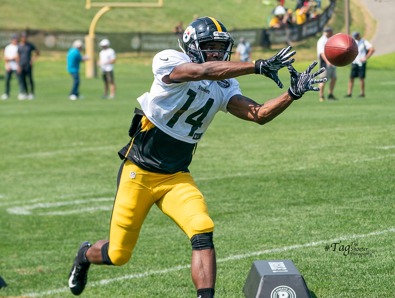 Day4SteelersCamp2019-08661.jpg