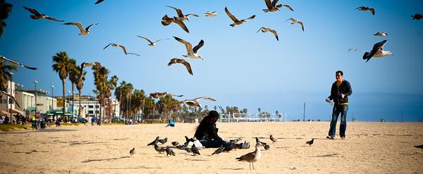 Venice Beach 2010