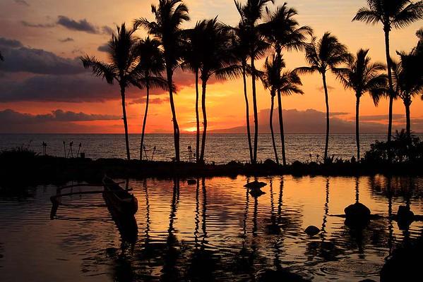 2012 Hawaii April 4-15