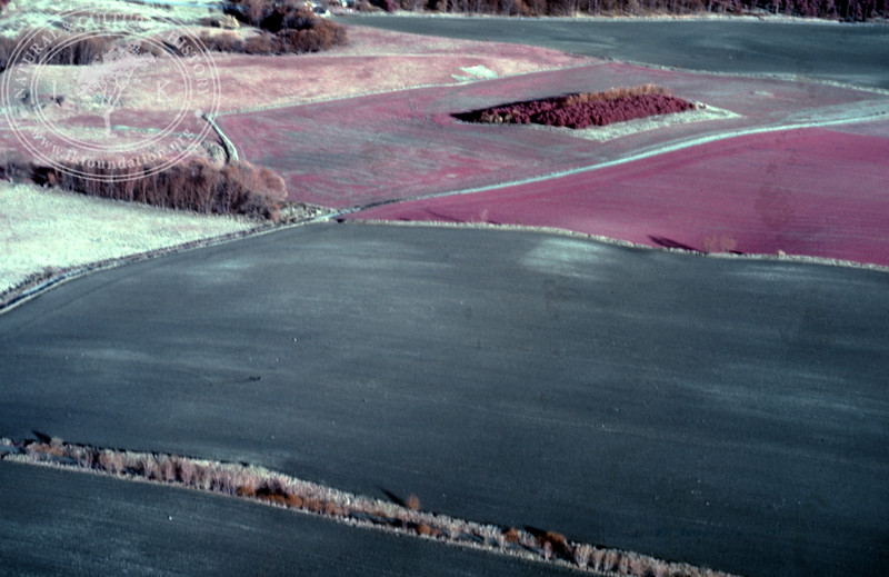 Farmland Torups Gård, south Ravlunda, from the west with ponds - with plantations and prehistoric remains. Experimentally photographed with infrared film and Kodak Wratten gelatin filter No:12 & 25 (2 April, 1989). | LH.0329
