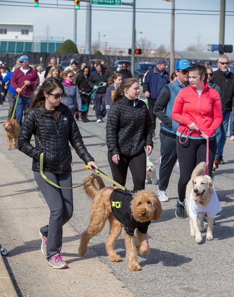 Richmond Spca Dog Jog 2018-755.jpg