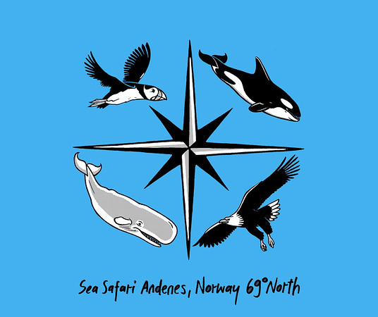 🇳🇴 Sea Safari 🐋🦅