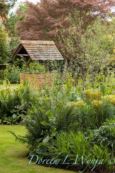 Beechleigh Garden - Jacky O'Leary garden designer_2989.jpg