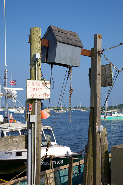 Cape Cod 2011 52.jpg