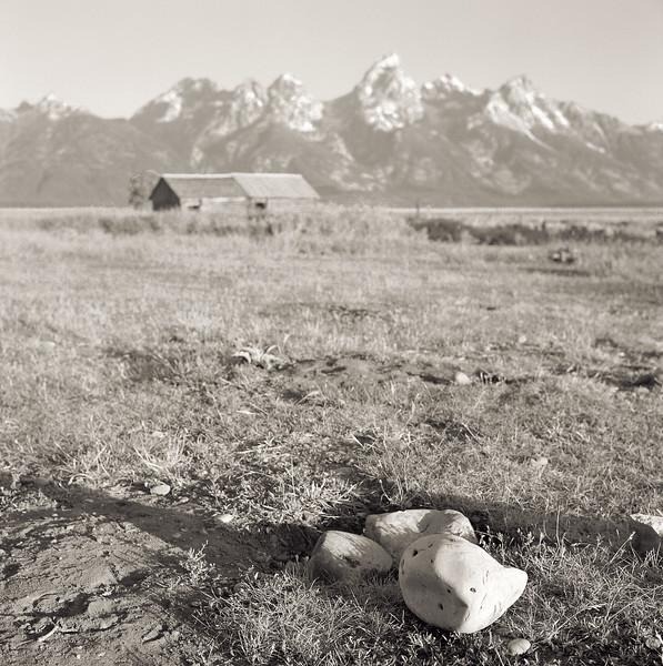 Kodak Portra 400 on the Rolleiflex at Mormon Row.