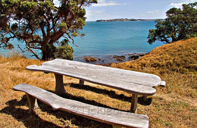 Motuihe Island Vista