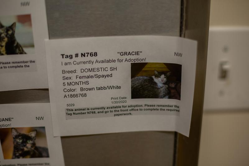 A1866768_GRACIE_MG_5358.jpg