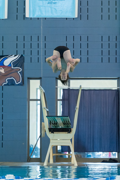 2018_KSMetz_Feb17_SHS Swimming_ State Finals_NIKON D5_4965.jpg