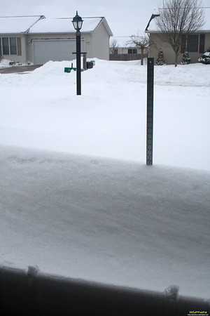 Snow 20110202