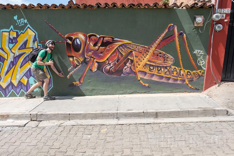 Riveted Kids Camp 2018 - Coding in Oaxaca (138).jpg