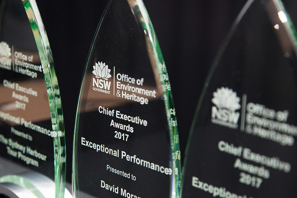 Chief Executive Awards - Print