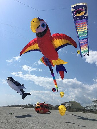 Misc April 2017 Kites