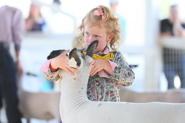 Northwest Junior Livestock Expo