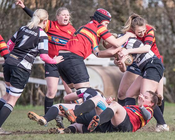West Bridgeford Ladies v T-Birds Thurrock  28/02/2016