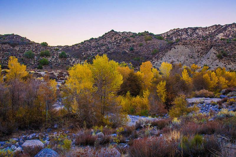 Autumn_Southern_California_MG_5243.jpg