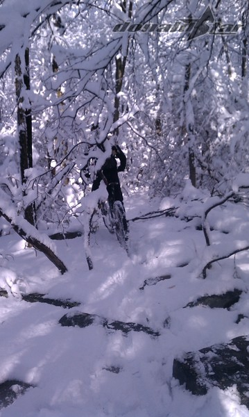 YES we are on a trail - & YES there is a mountain bike in the picture - our first snow ride of the year Frederick MD