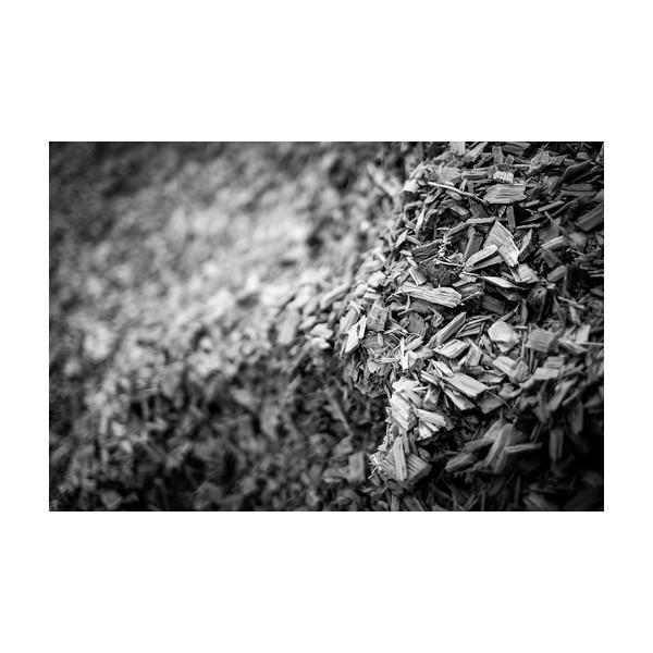 211_WoodChips_10x10.jpg