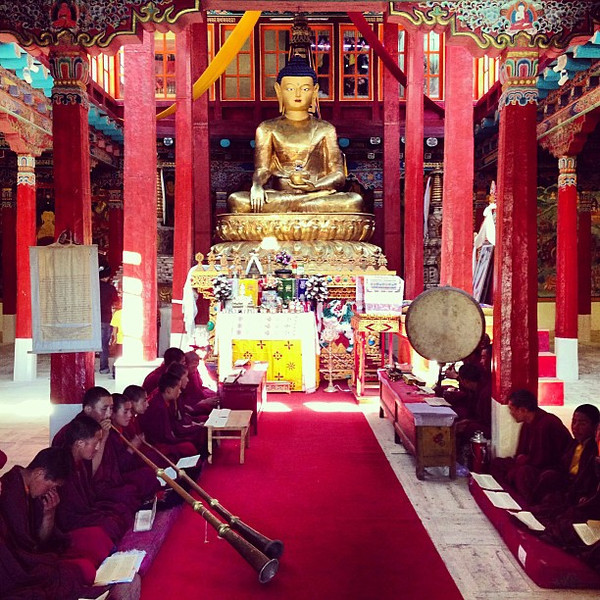 Novice monks and dharma trumpets. A fabulously-timed Sunday morning surprise at Hemis Monastery #Ladakh
