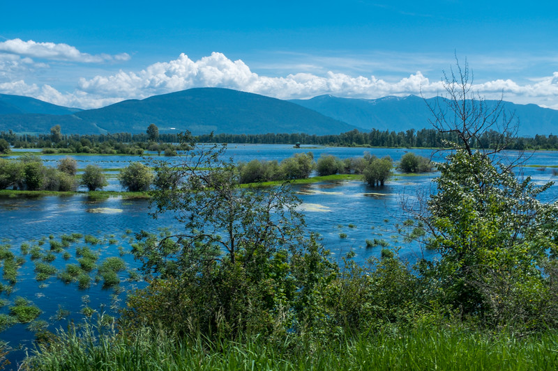 Flooded Kootenay Valley