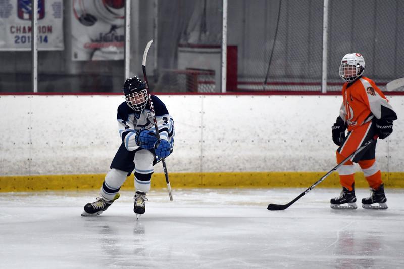 hockey_3453.jpg