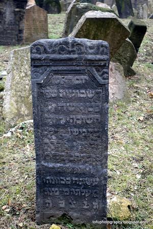Jewish cemetery - February 2014
