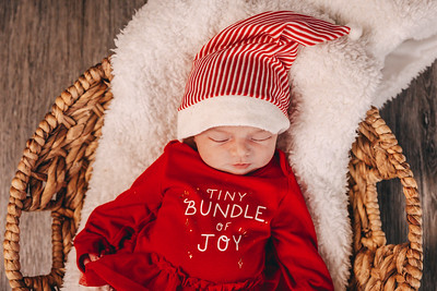 Savino Newborn Session 12/15/20