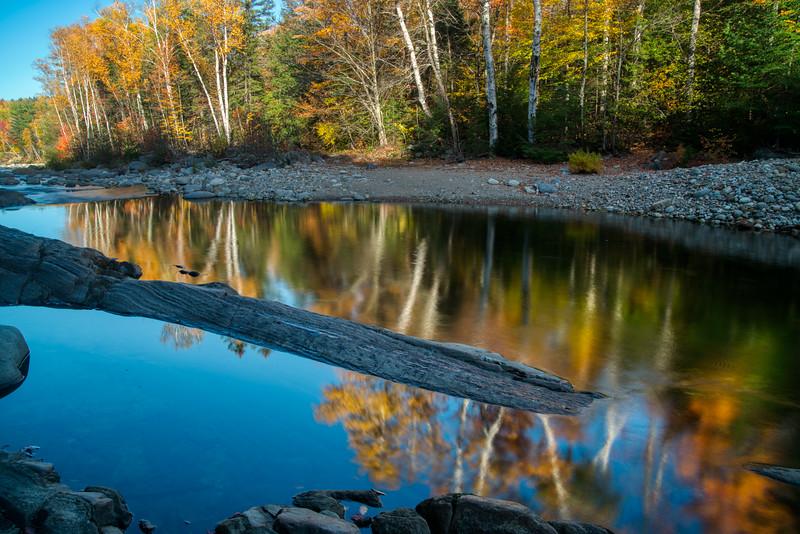Maine Fall 2019-22.jpg
