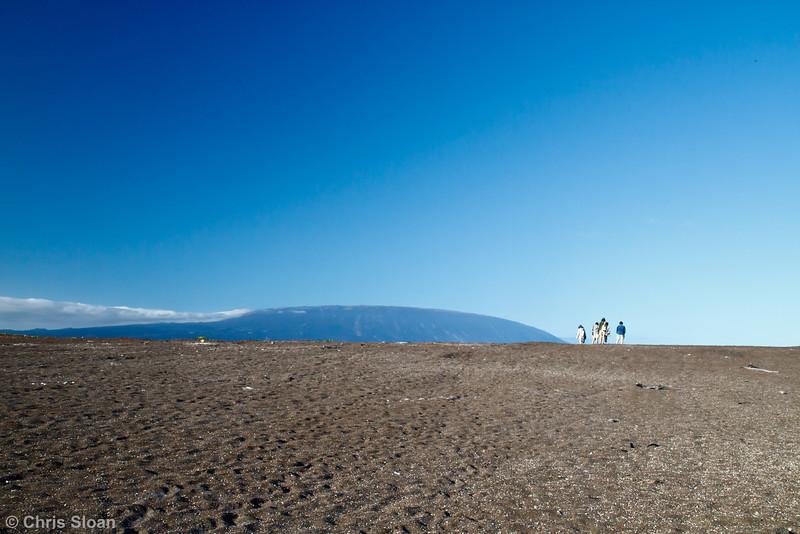 Playa Tortoga Negra, Isabela, Galapagos (11-24-2011)-4.jpg