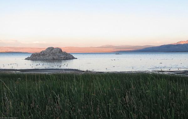 2013-07 Mono Lake Trip (7/11-7/14)