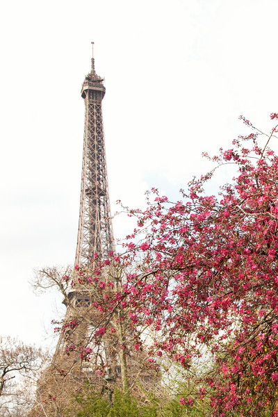 Eiffel Tower Spring