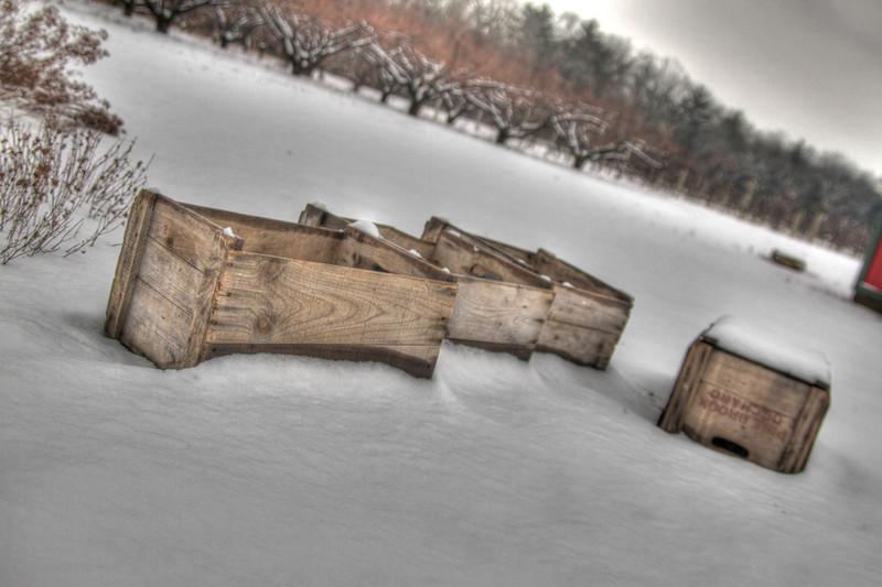 Easy Pickins Winter 026-1676781377-O.jpg