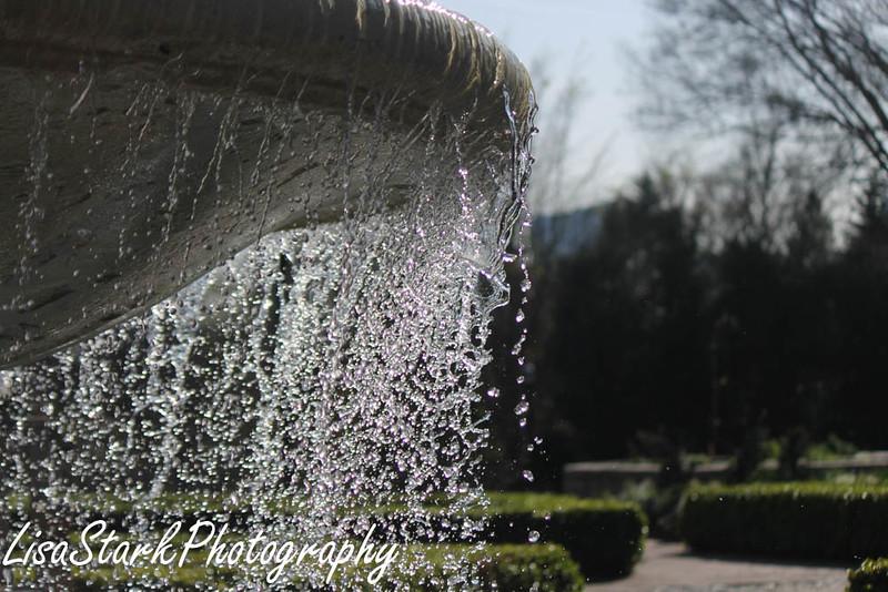 Atlanta Botanical Garden-7.jpg