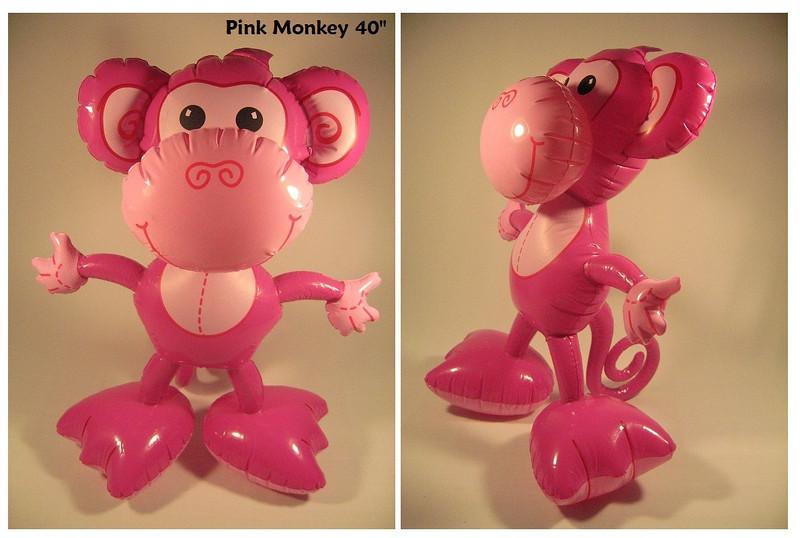 IF- Animal- Monkey 3- PK 40.jpg