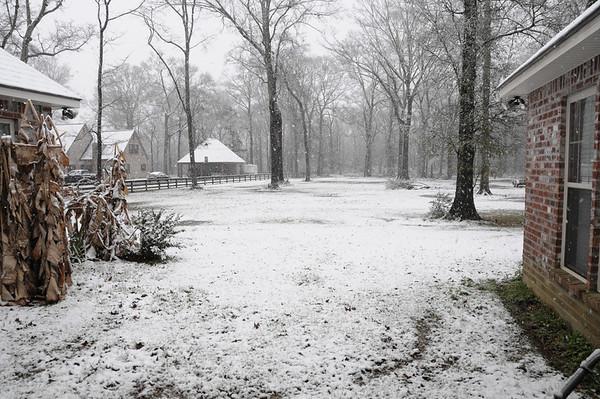Snow February 2010 - CJ