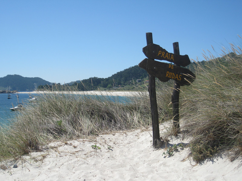 White beach bordered by sea grass on a blue sky day in Spain's Cies Islands