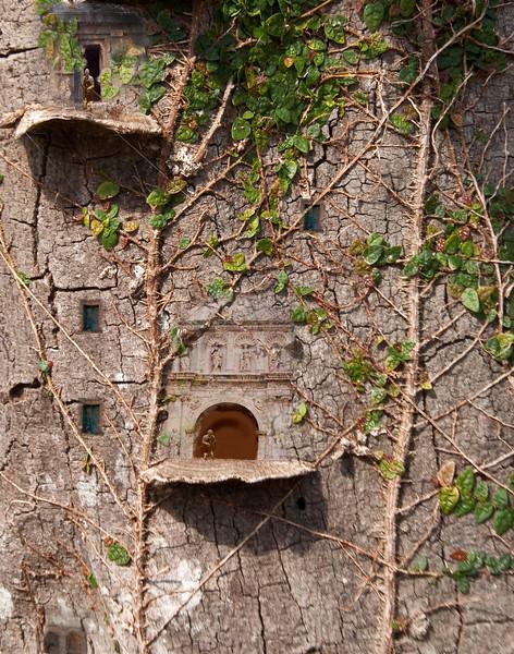 Tree Palace.jpg