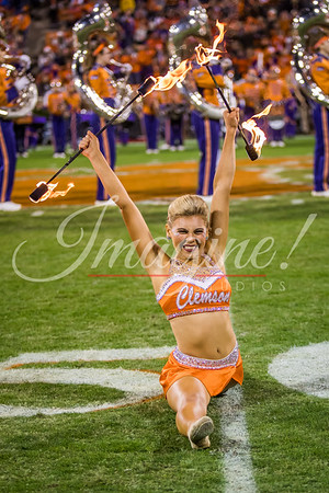 Clemson vs South Carolina - Photos by Christopher Sloan and Tamara Bowen