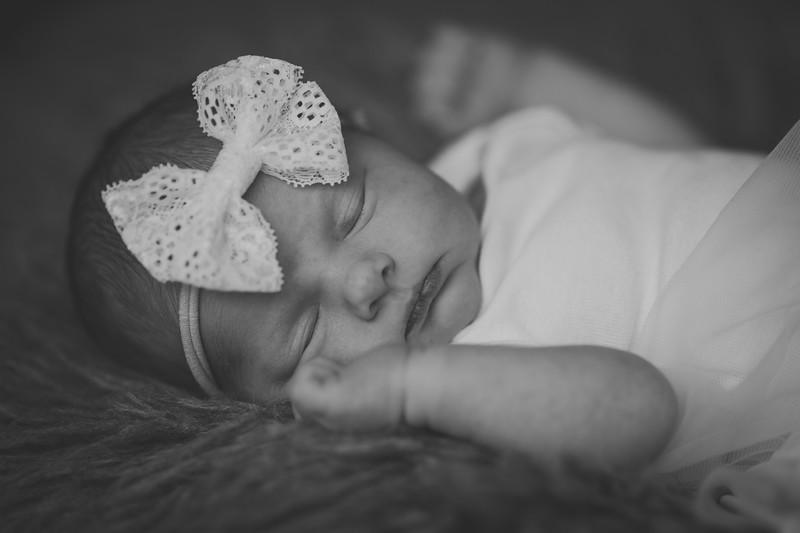 Baby Plourde