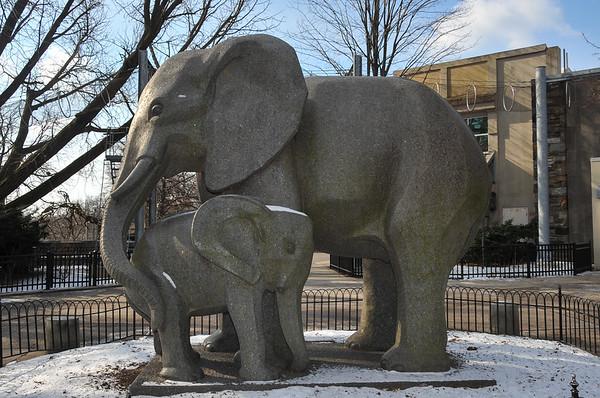 Philadelphia Zoo (2/4/2013)