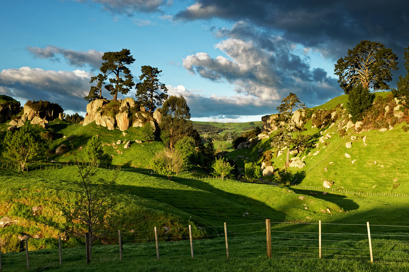 Countryside along Frenchpass Road near Cambridge in the Waikato