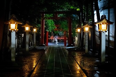 Part 6 - Tokyo, Nikko, and Toyama