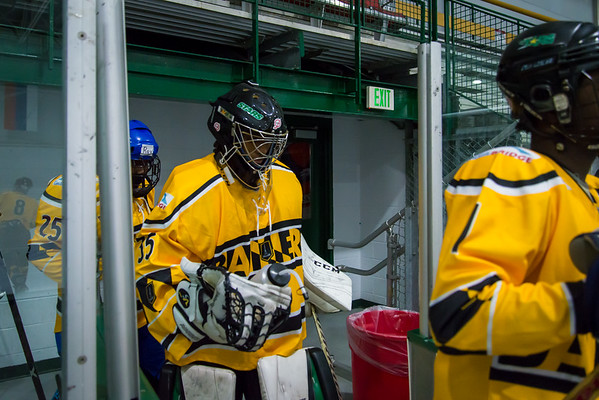 Banners-Sentinels-Hockey