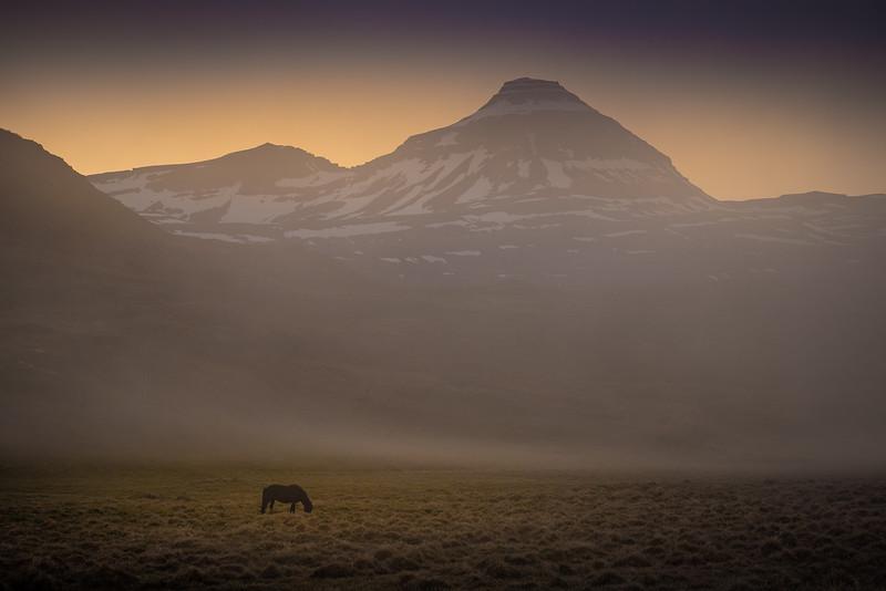 Iceland-667.jpg