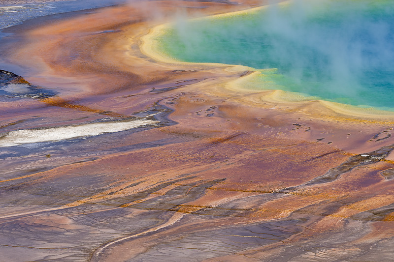 Thermophiles, Yellowstone National Park, USA