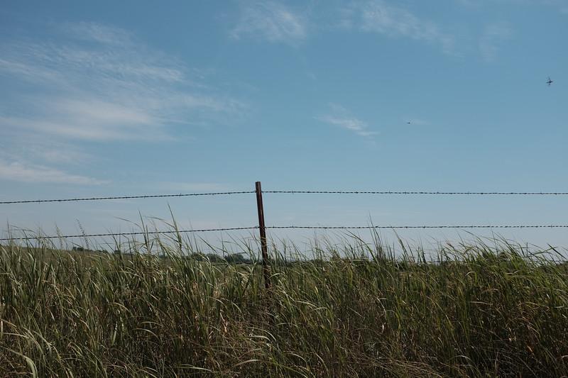 2019-07-23 Syngenta Nebraska-522.jpg