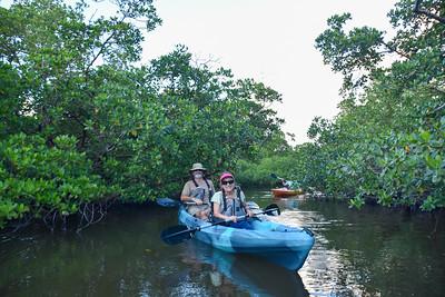 9AM Mangrove Tunnel Kayak Tour - Mauldin