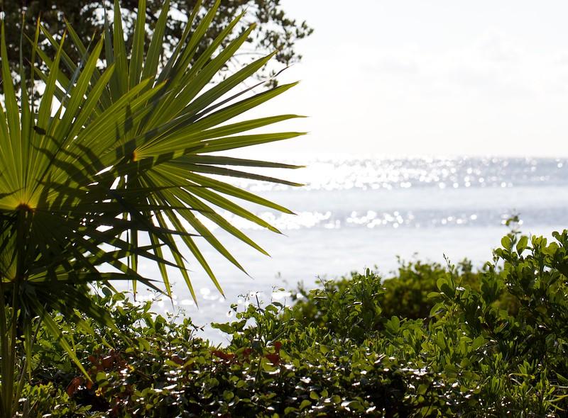 florida bay morning